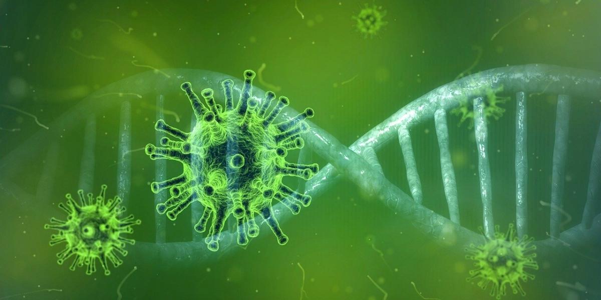 Delta Plus variant nullifies use of monoclonal antibody: Niti Aayog's Dr VK Paul