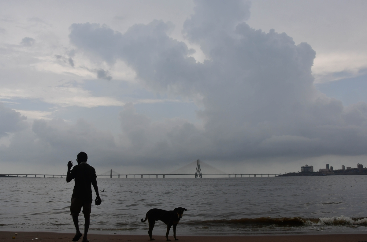 Mumbai: Latest updates - IMD downgrades rain alert to Orange in city and Thane districts for tomorrow