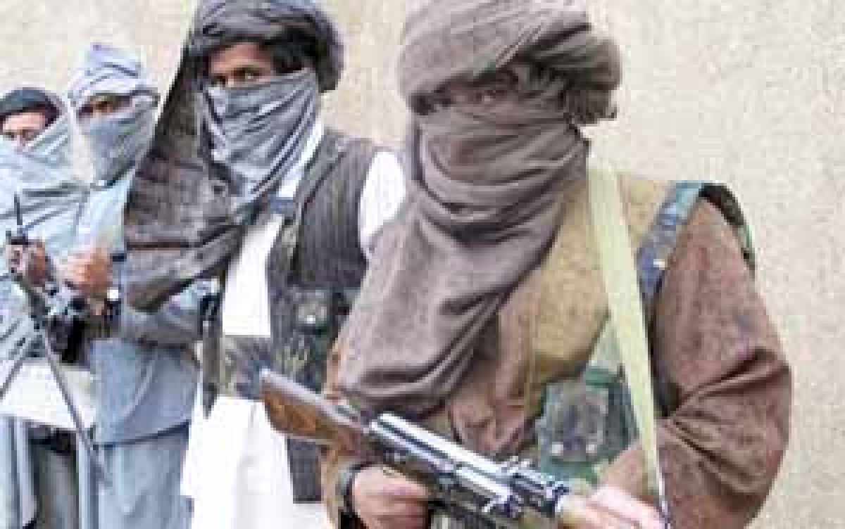 Taliban mistakenly reveal their mailing list!