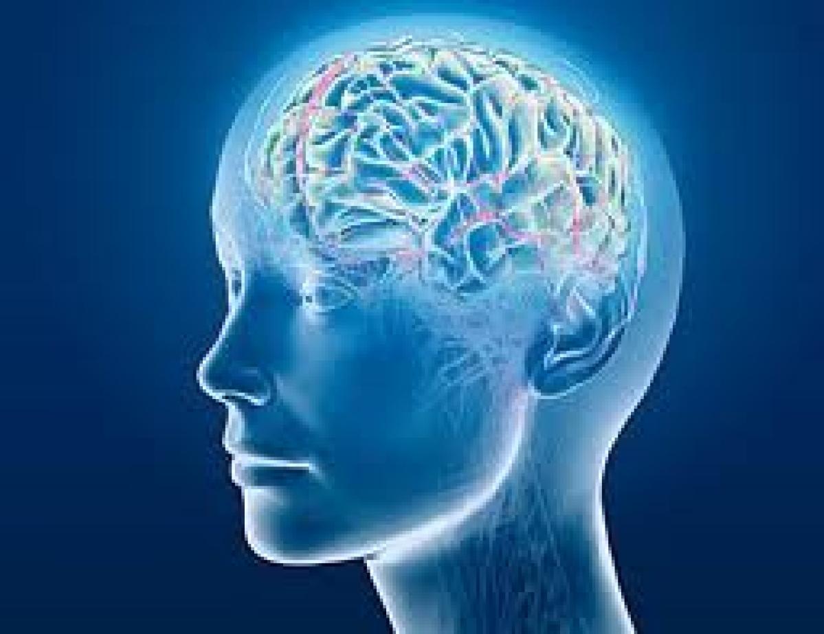 How brain regulates memory and mood