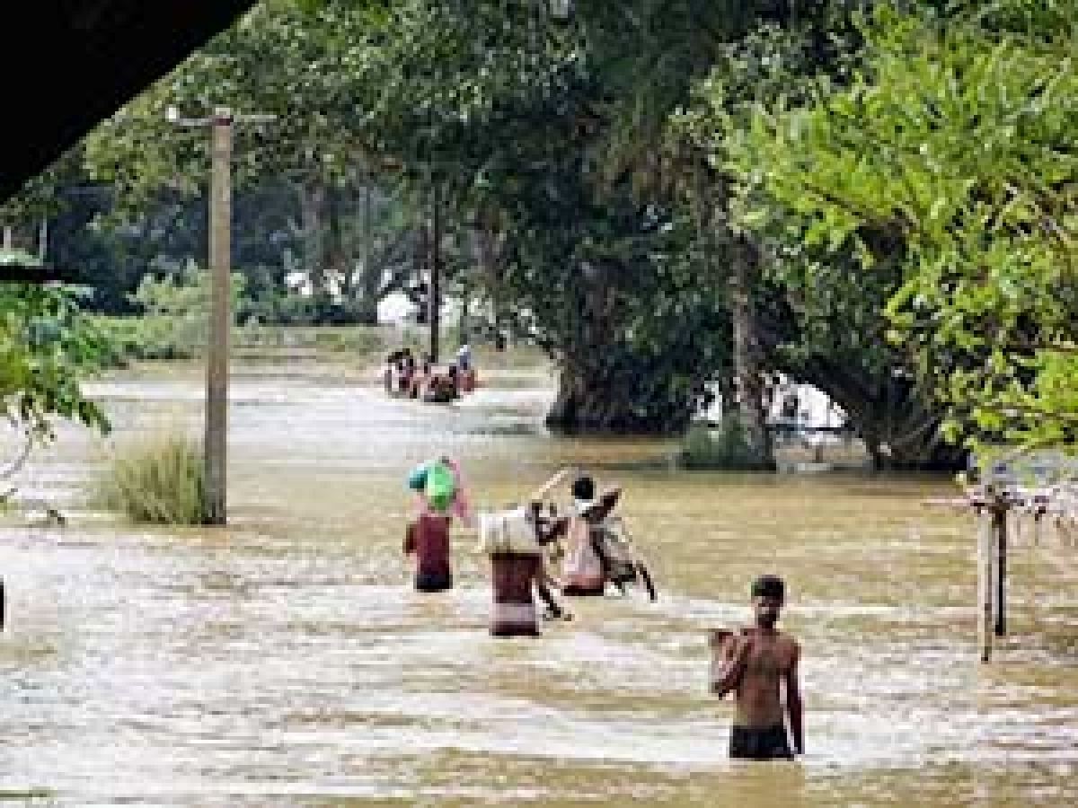 Rains: HP incurs loss of about Rs 600 crore crops, property