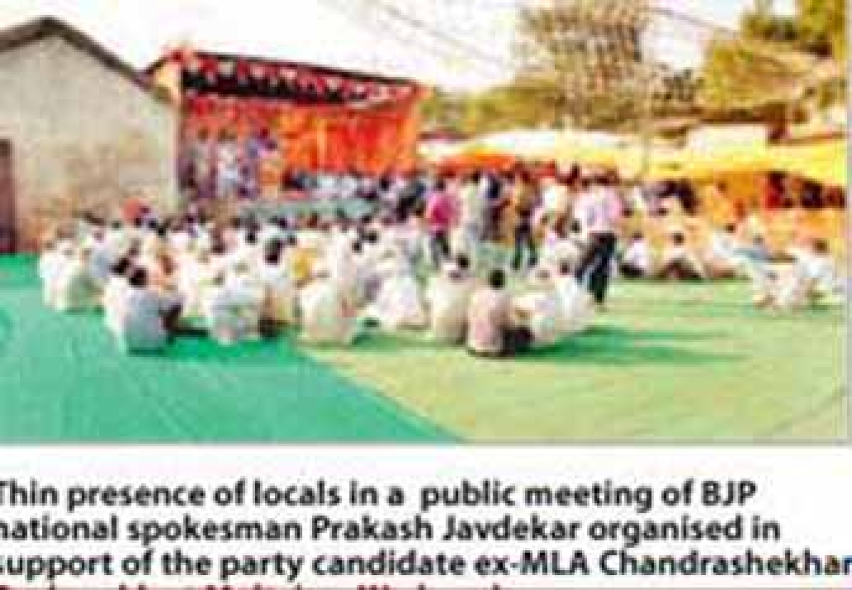 BJP stalwarts for poll campaigning