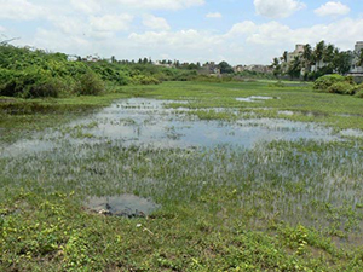Bhopal: Last day of hearing on Master Plan 2031; Objections raised against encroachments on weltlands, catchment areas