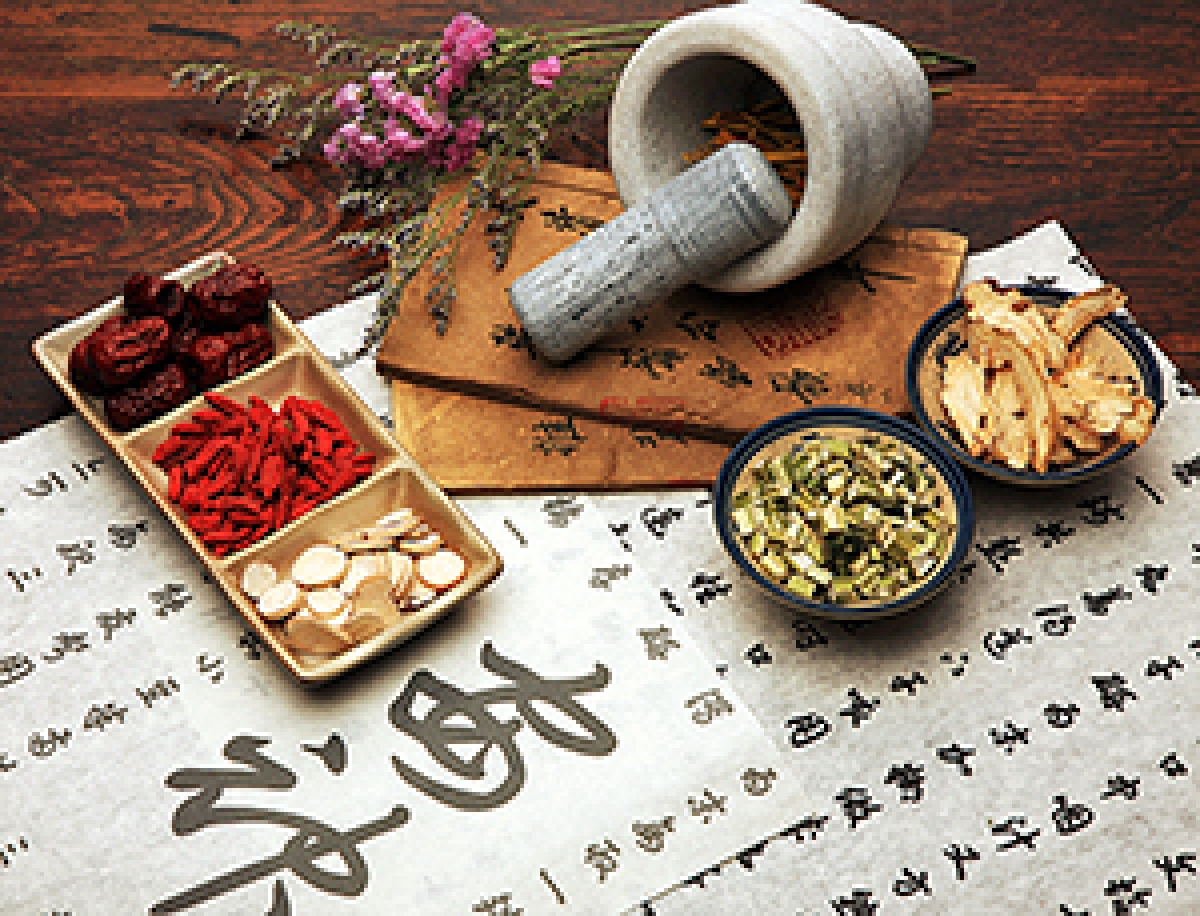 Chinese medicinal herb may help combat obesity