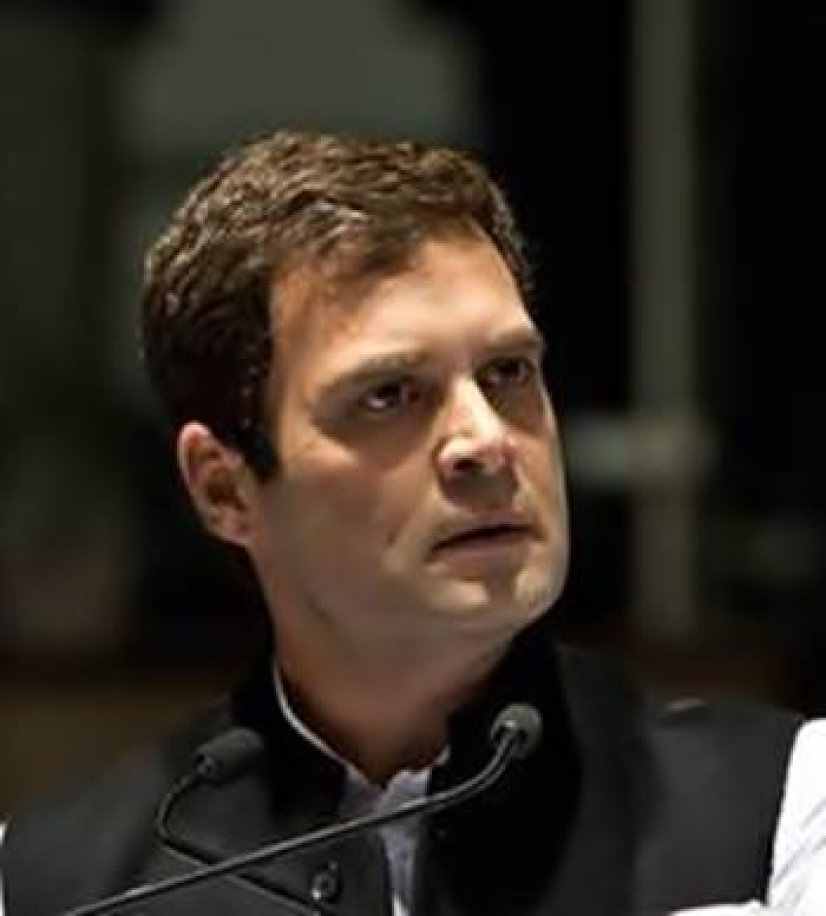 Rahul, Varun take oath one after another in LS