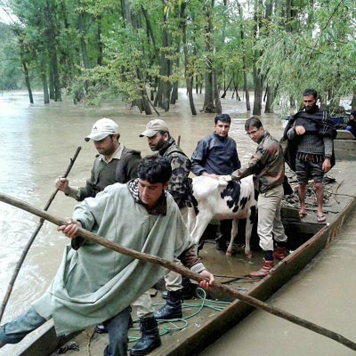 Sc airs anguish over kashmiris' plight