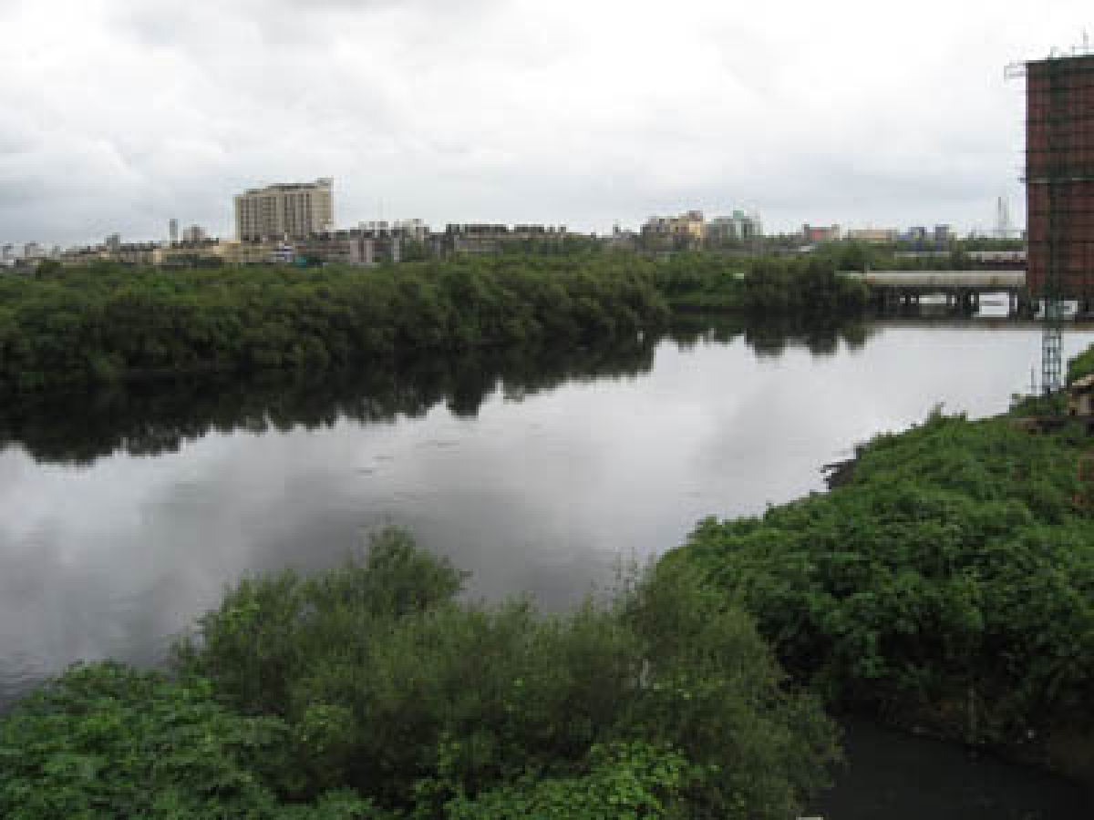 7-day-old baby choked, thrown in Mithi river