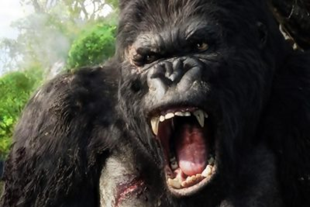 New 'King Kong' film gets retitled, delayed for 2017