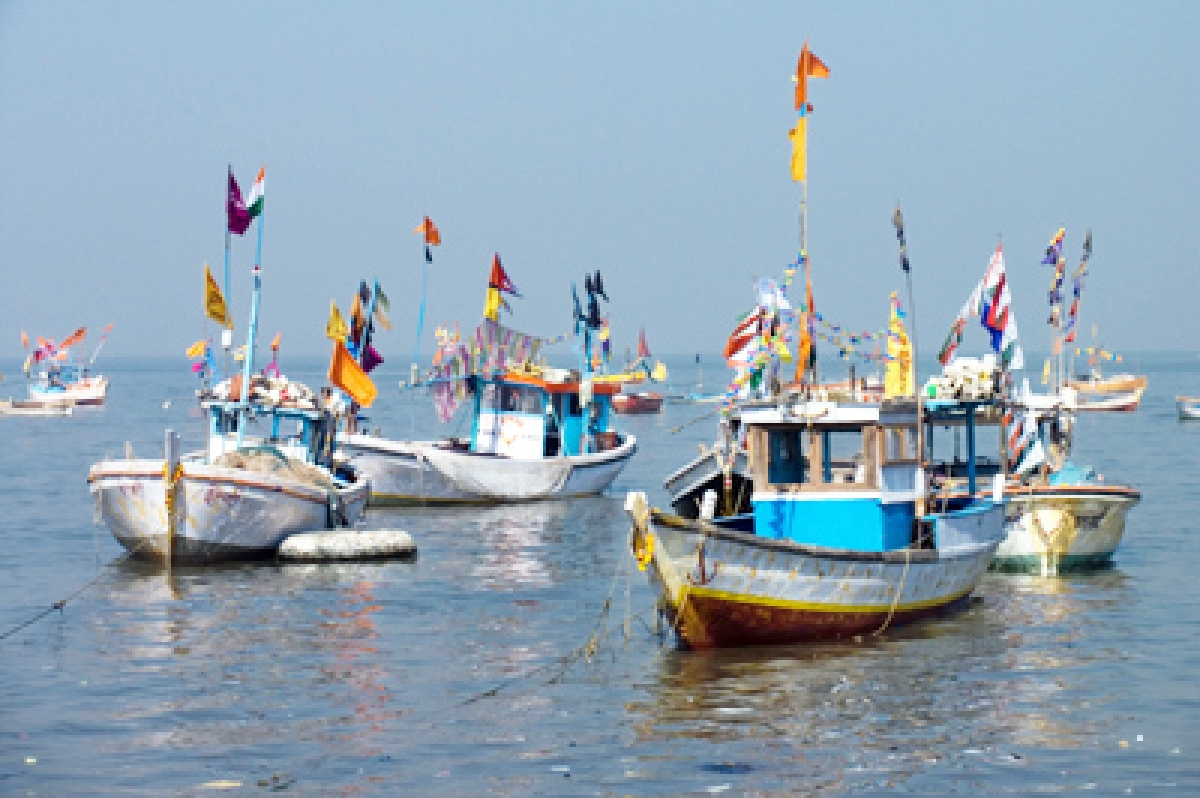 Uniform colour for fishing boats, now