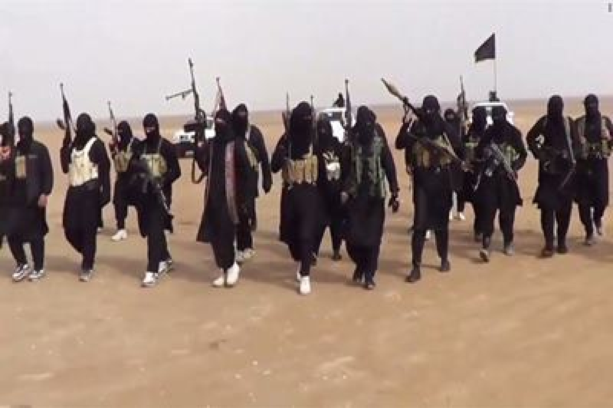 ISIS planning to use birds as suicide bombers to blow up planes