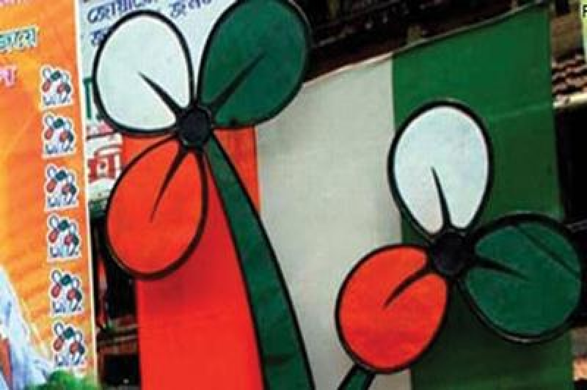 Trinamool deploys two young grads for poll-related research