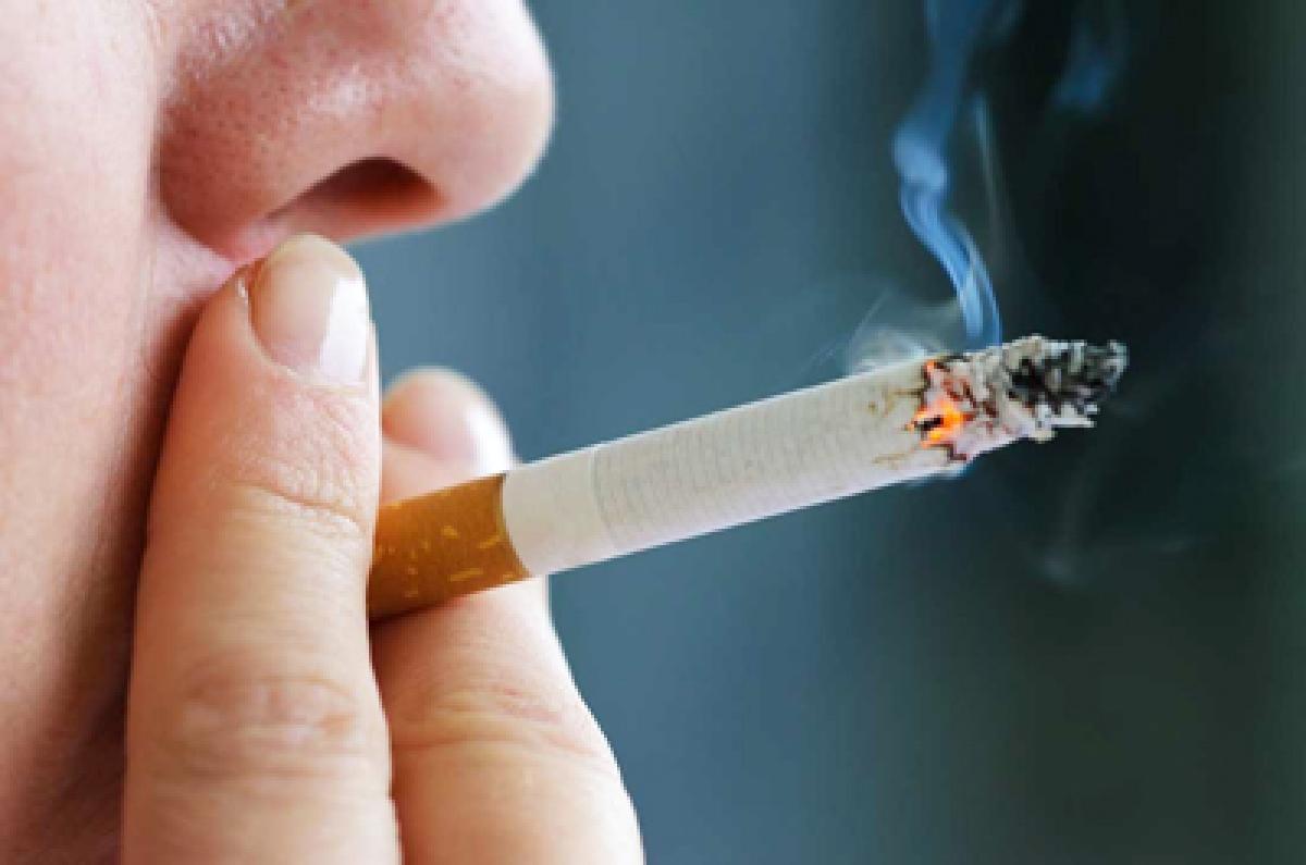 53% smokers between 20-30 years: Survey