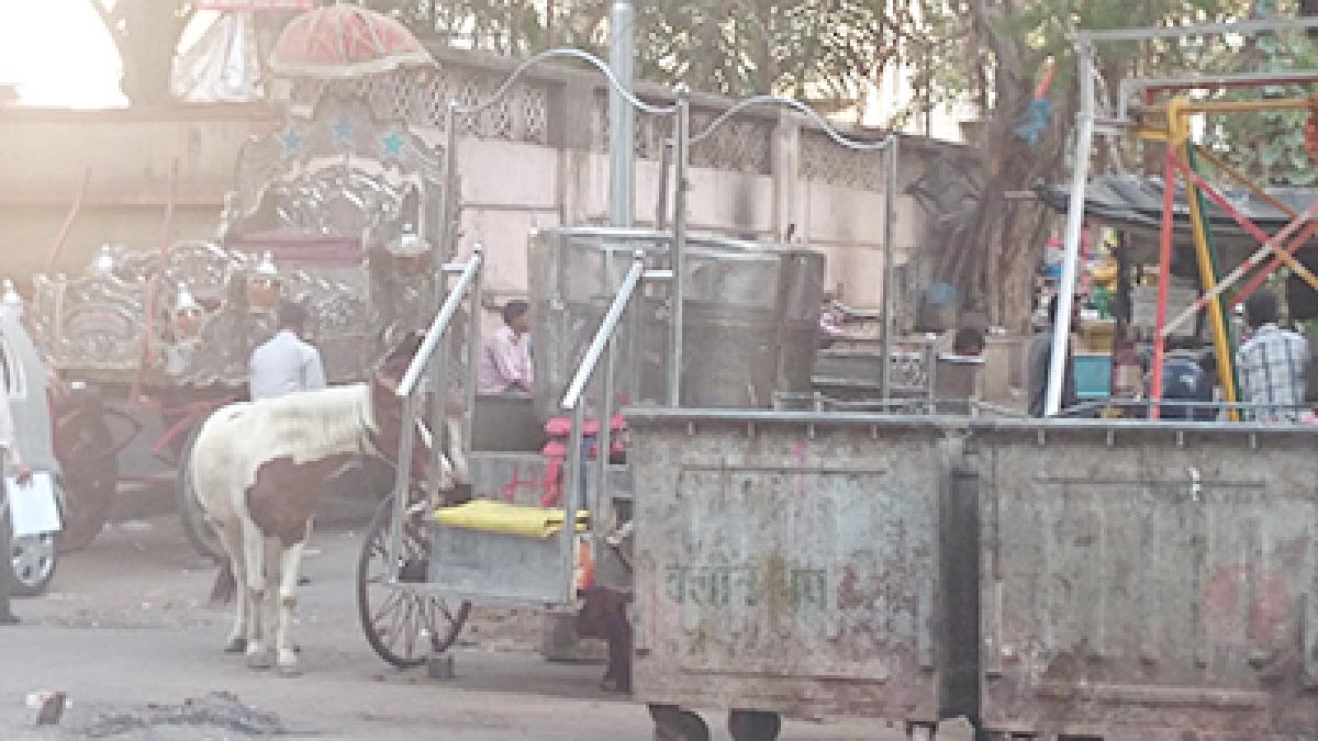 Madhya Pradesh: Badnawar earns 1-star rating in Garbage Free Cities
