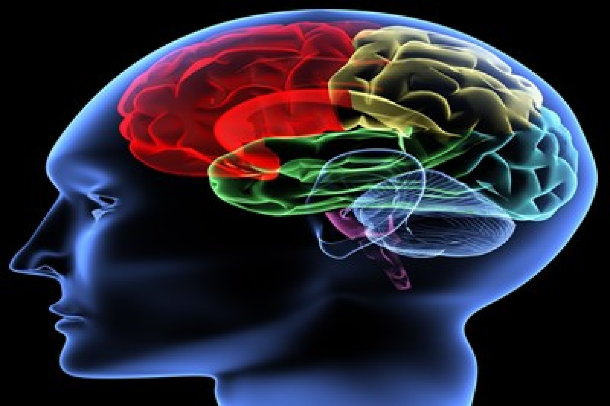 Decreased blood flow in brain earliest sign of Alzheimer's