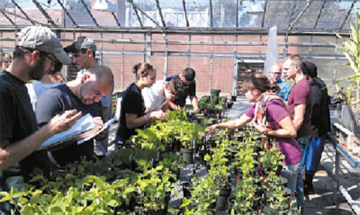 Green way – Career in Horticulture