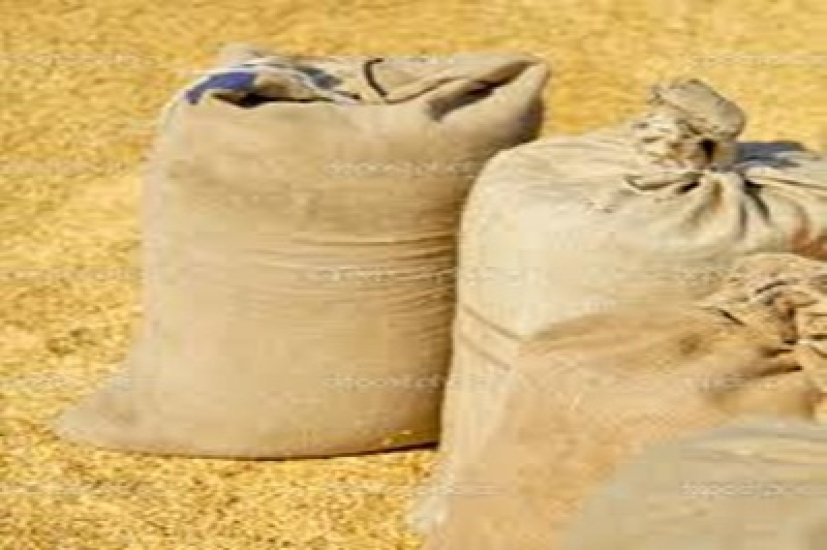 Thieves give drugged 'prasad' to 26, steal 60 wheat bags in Kurukshetra