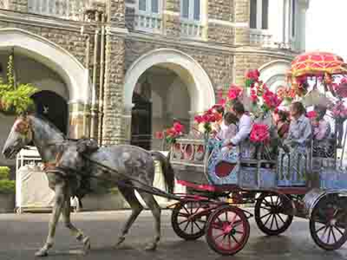 Mumbai to miss 'Victoria' rides  after a year as High Court orders ban