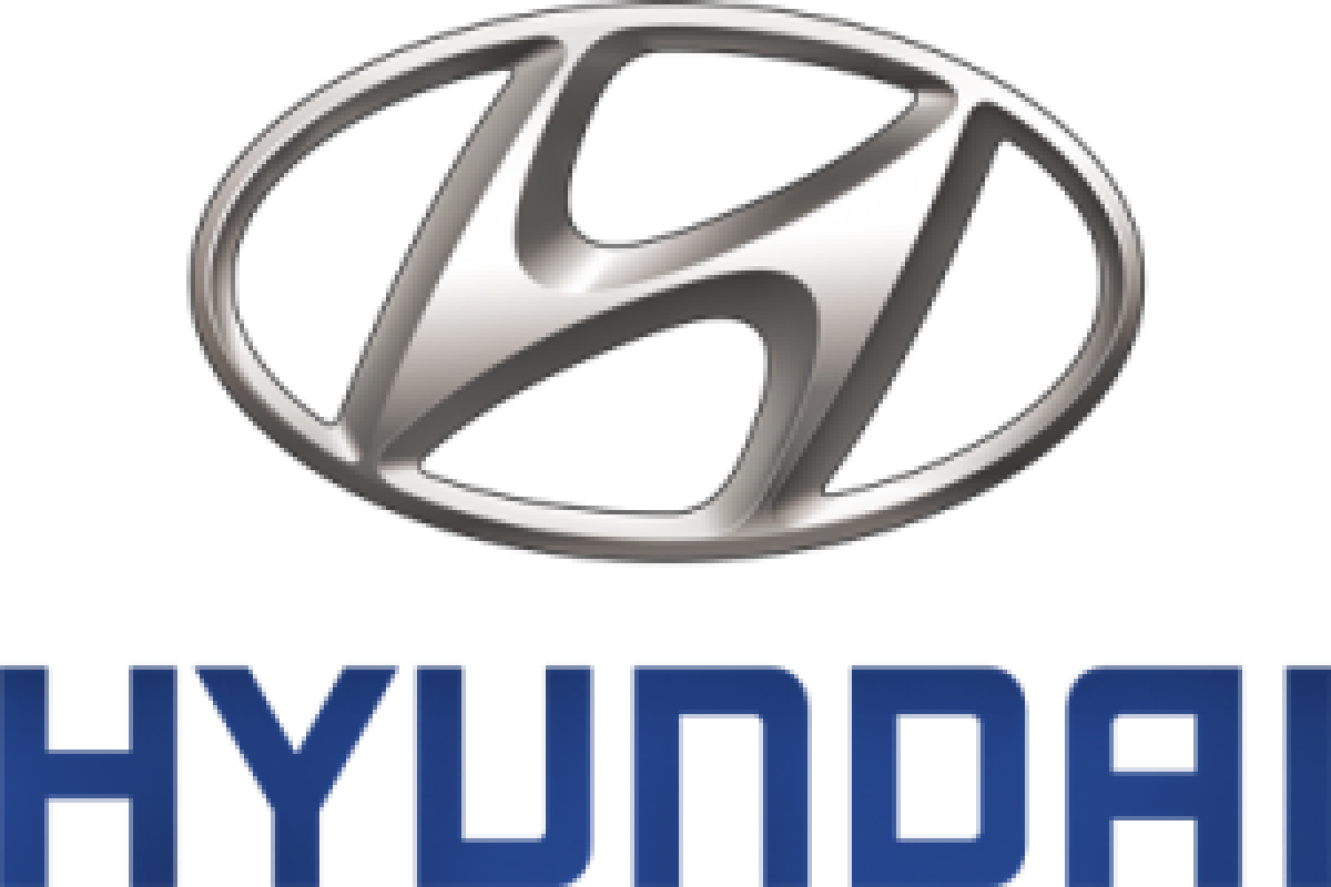 Hyundai forecasts lowest sales growth in 10 years