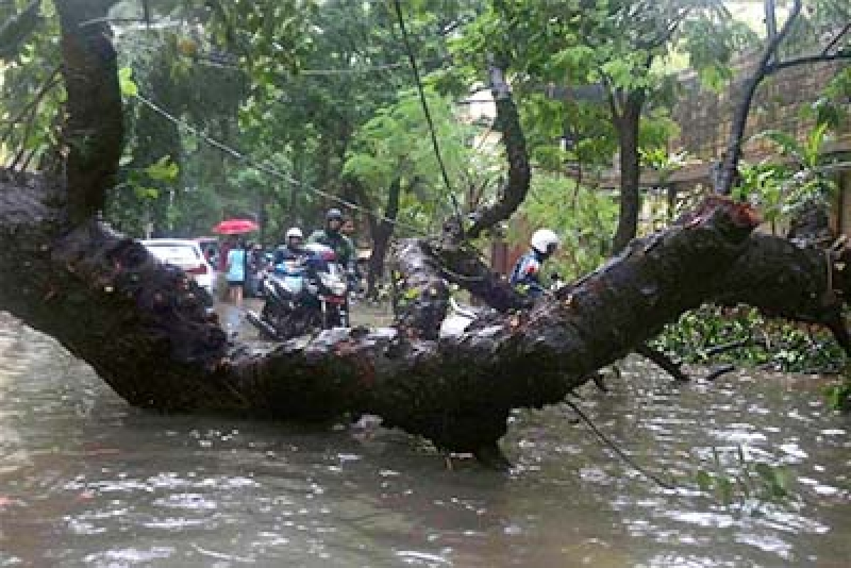 Seventeen killed in storms, rain in Uttar Pradesh