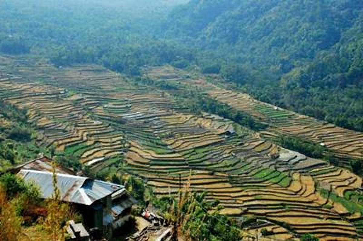 Here's why you should visit Nagaland
