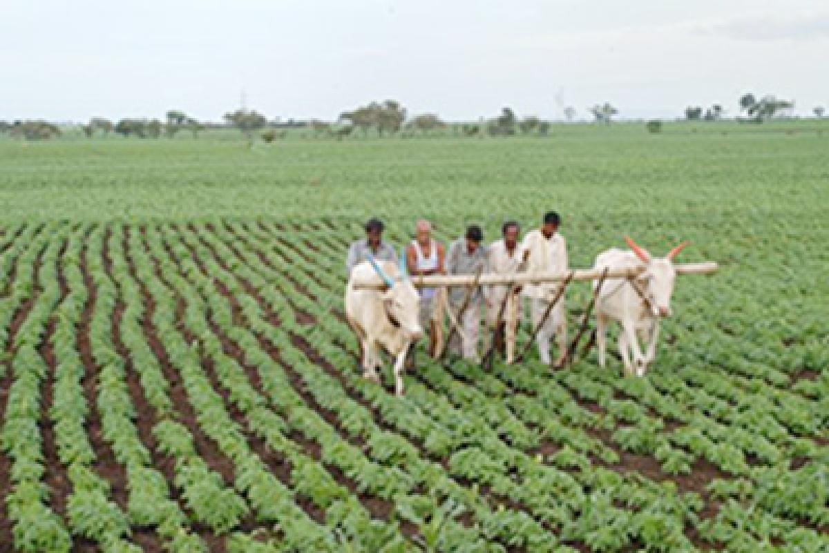 Respite for Govt: Land  bill set for winter session