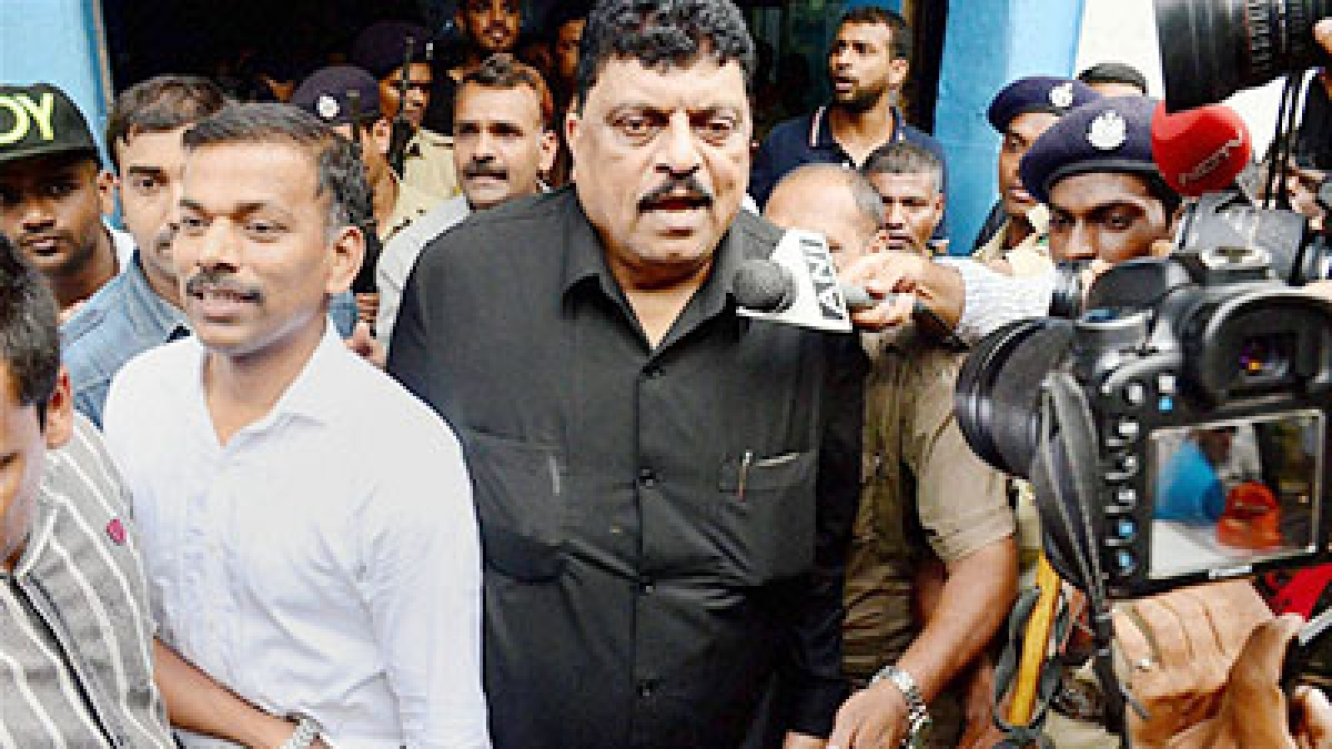 'Humans are punished for eating cow...': Goa NCP MLA Churchill Alemao calls for punititive action against tigers