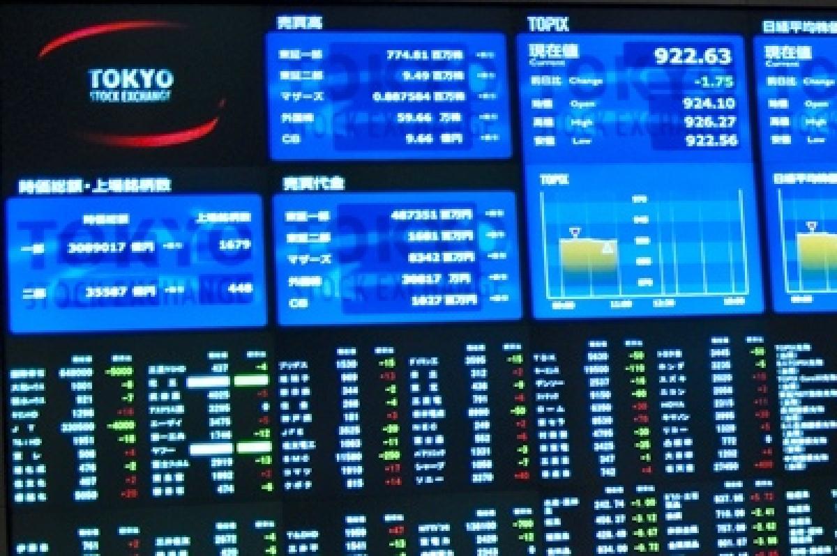 Tokyo shares plunge