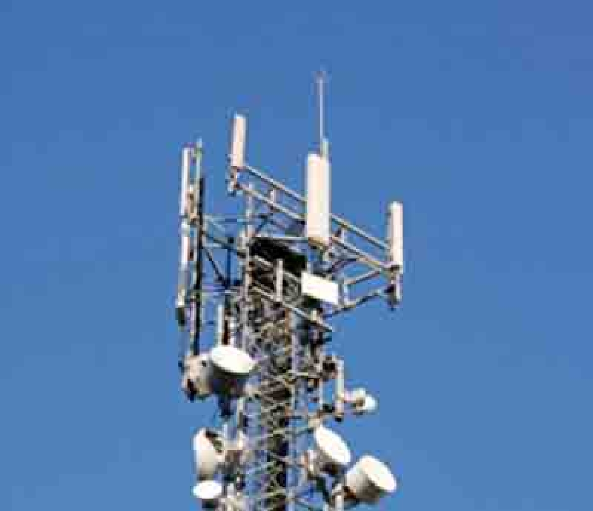 Govt buildings to allow mobile towers