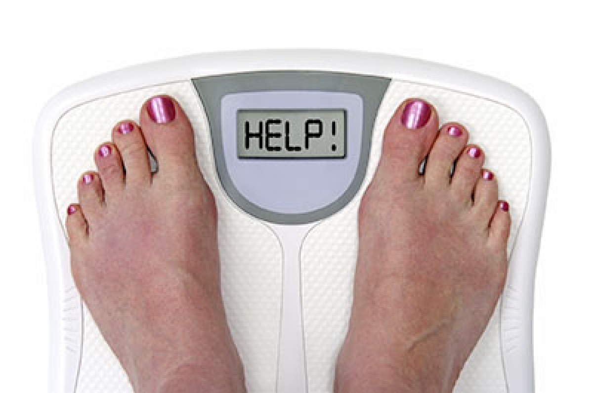 Gut bacteria may  cause weight gain