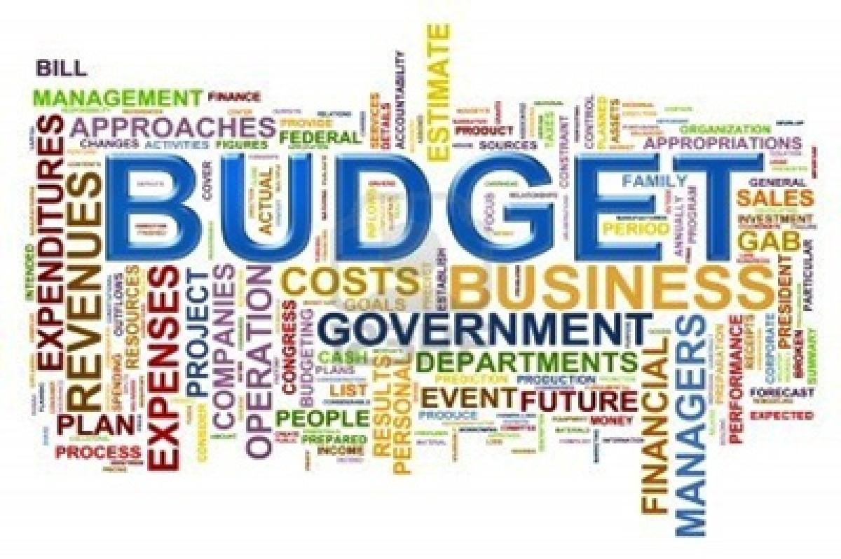 R N Bhaskar: Quick Note on Budget 2016