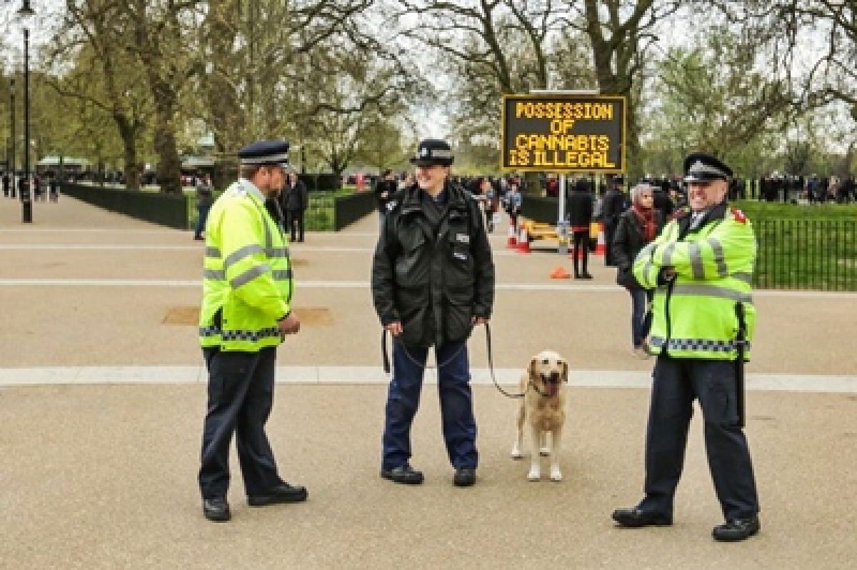 Ex-British police officer to head cannabis legalization committee