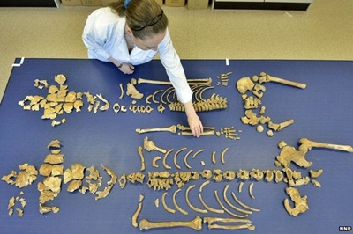 Skeletons of 200 Napoleonic troops found in Germany
