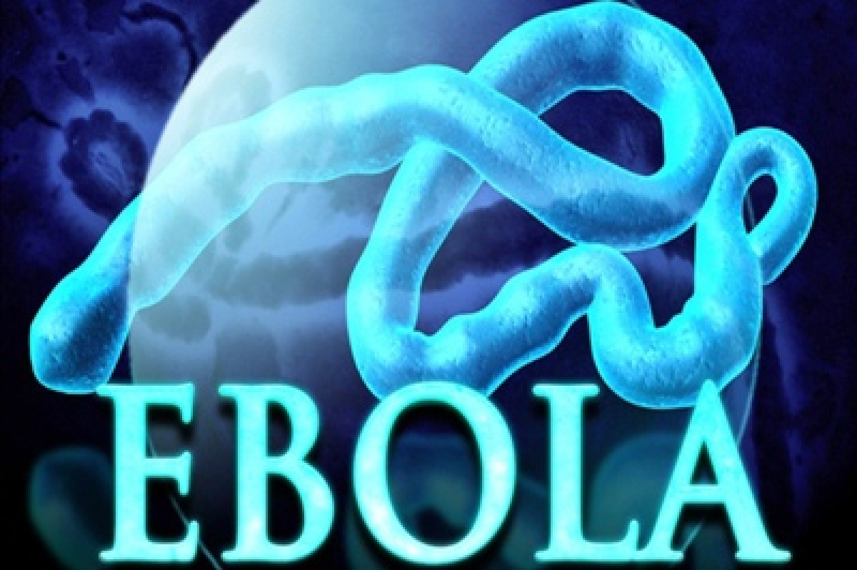 Ebola scare stigmatised African immigrants in the US