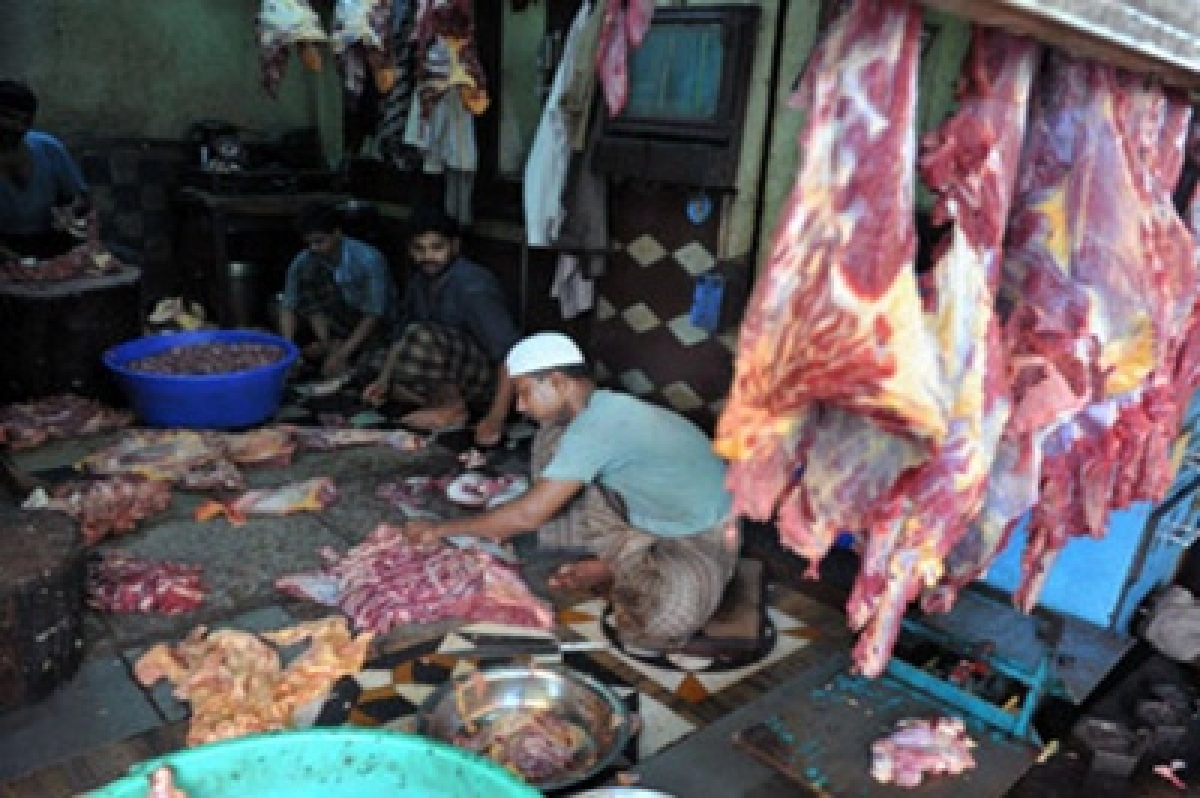 I am vegetating… Lament of a meat-eater
