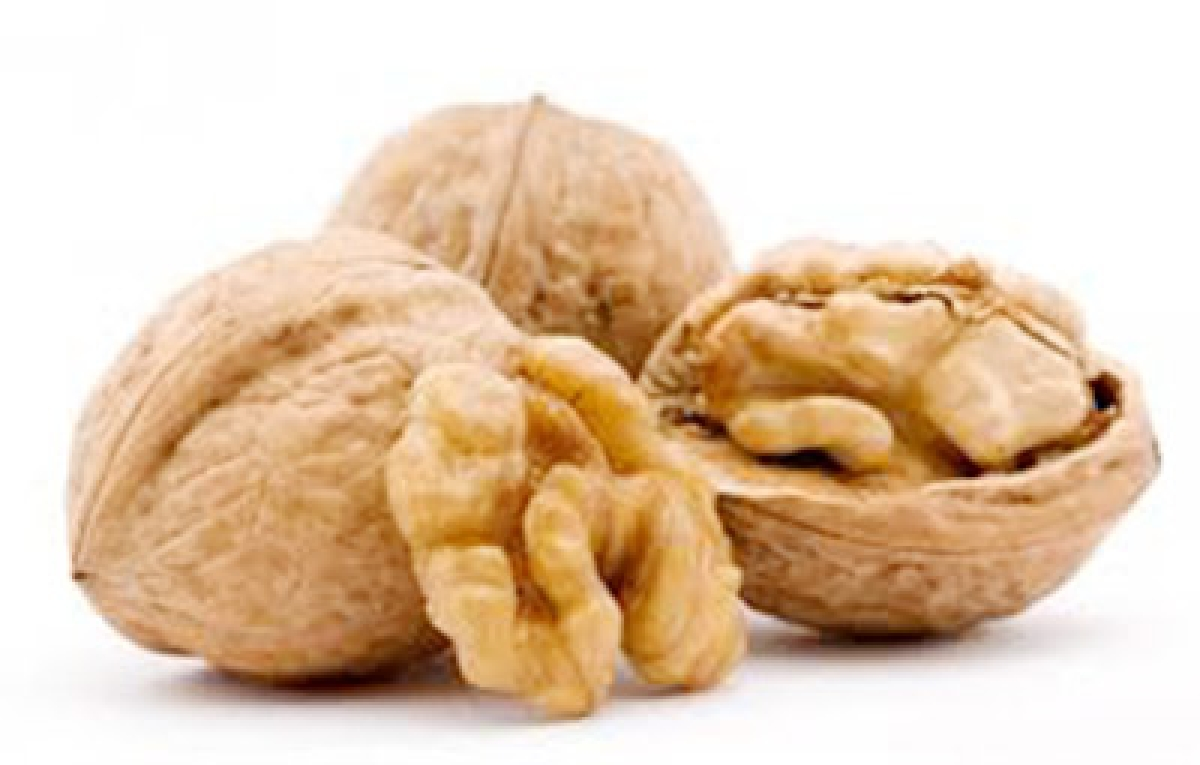 A handful of walnuts secret to better sperm: researchers