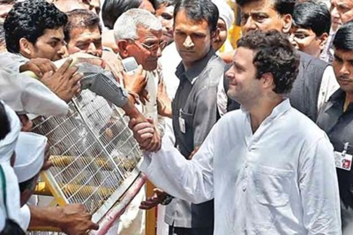 Rahul Gandhi on padayatra, meets and comforts distressed farmers