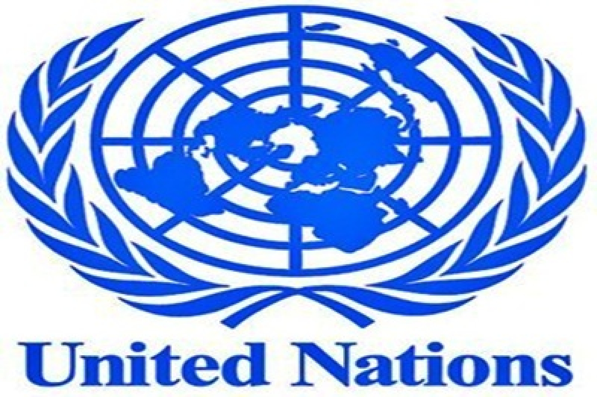 UN sanctions two C Africans for leading armed groups
