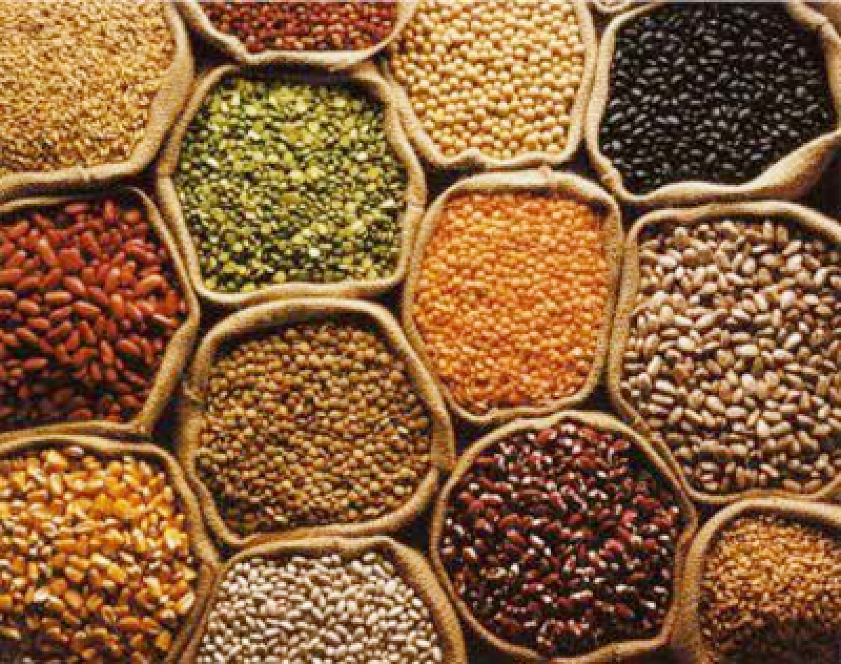 Commerce ministry lays down procedure for import of certain pulses