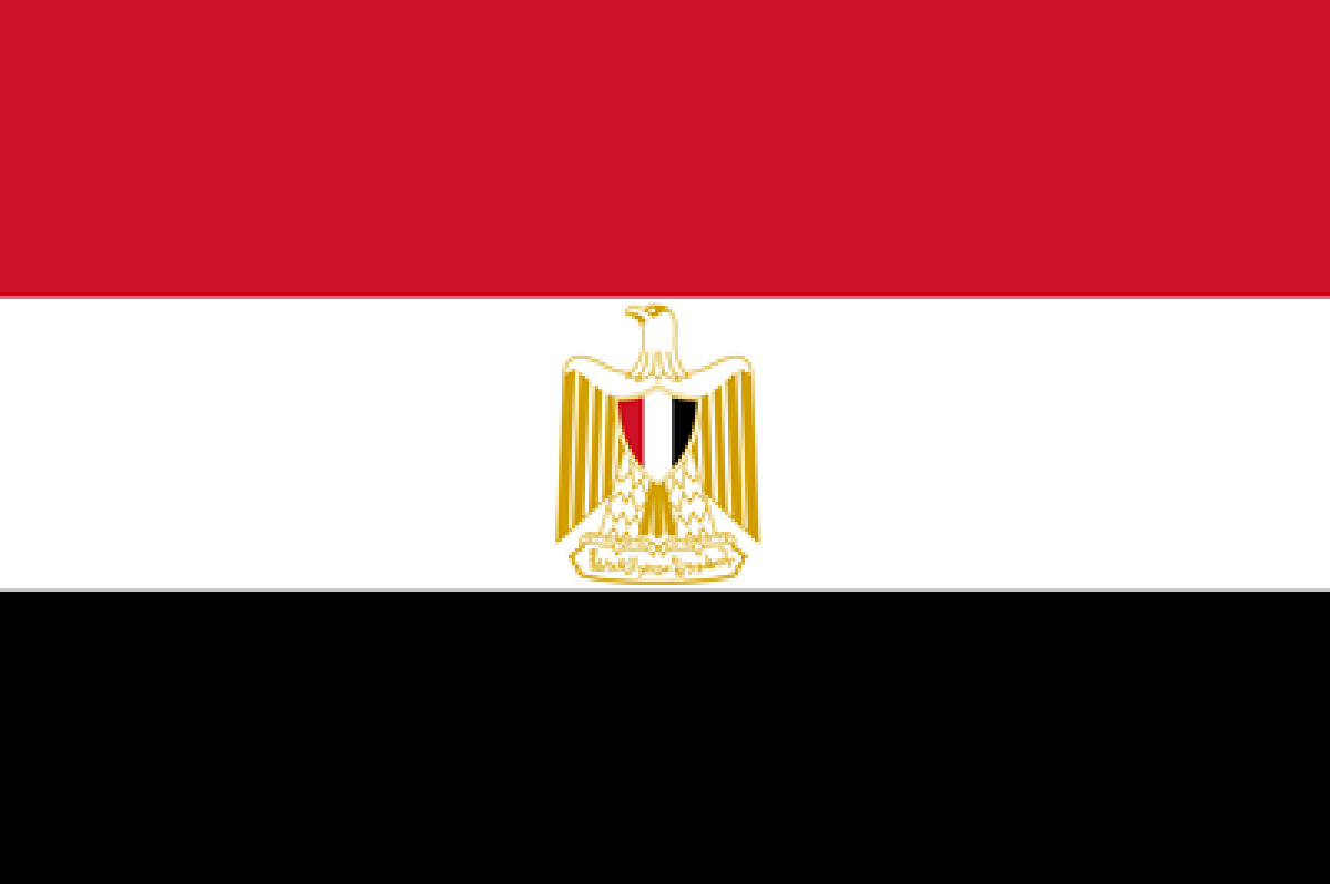 11 new governors take oath in Egypt