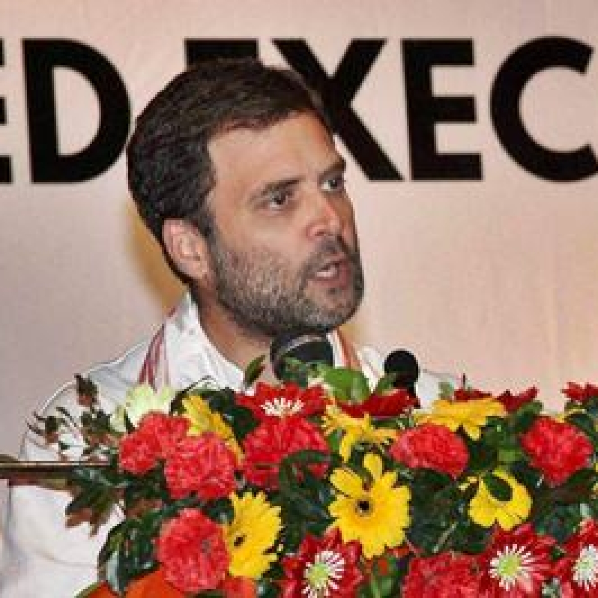 Rape in India Comment: EC urged to punish Rahul for violating women's dignity