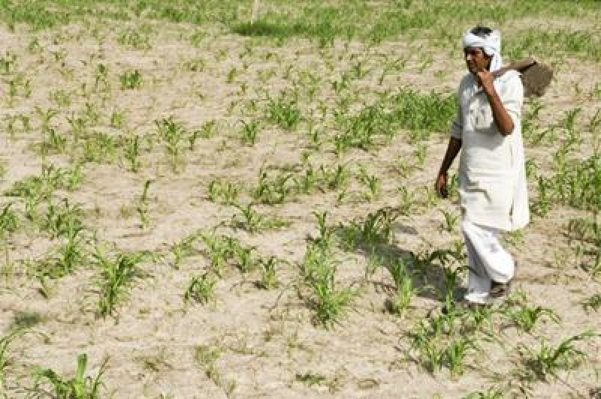 Govt. aims to bring 50 percent farmers under crop insurance scheme: PM Modi