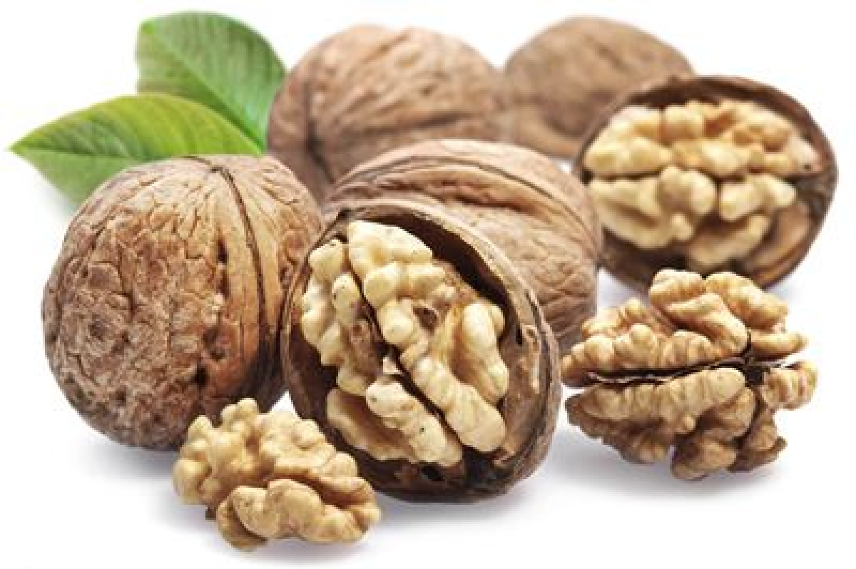 Healthy diet, walnuts may help fight ageing effects