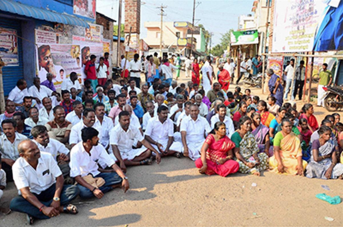 SC stay on Jallikattu  sparks protests in TN