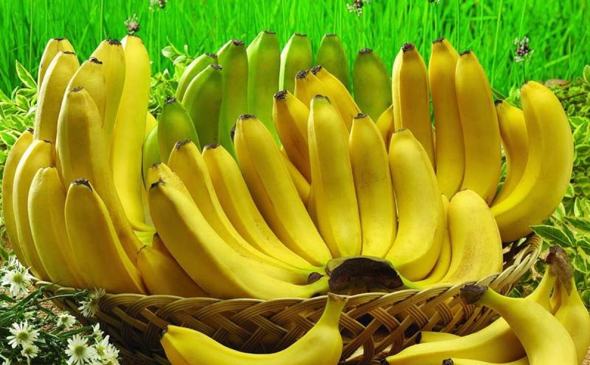Madhya Pradesh: India exports  Rs 619 crore banana during 2020-21