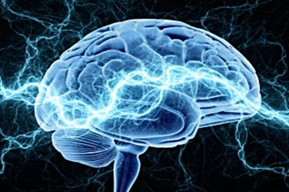 Our brains can store 10 times the memories previously believed