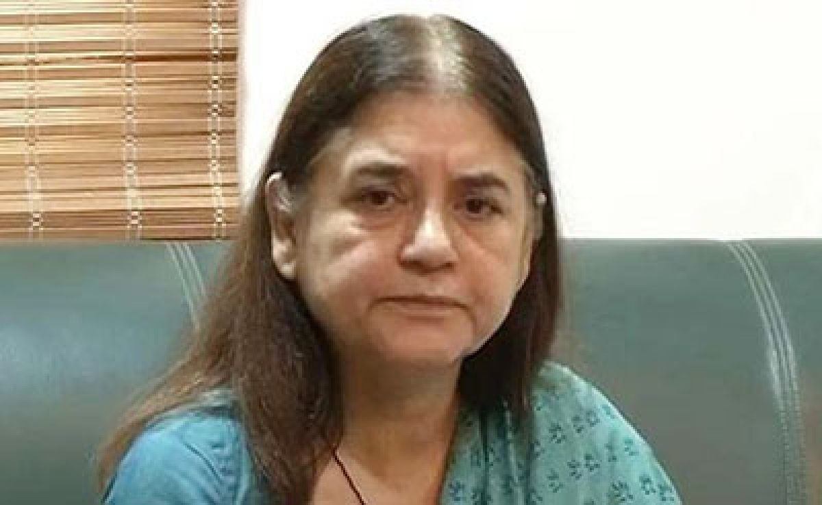 Women activists welcome Maneka Gandhi's call for amending passports rules