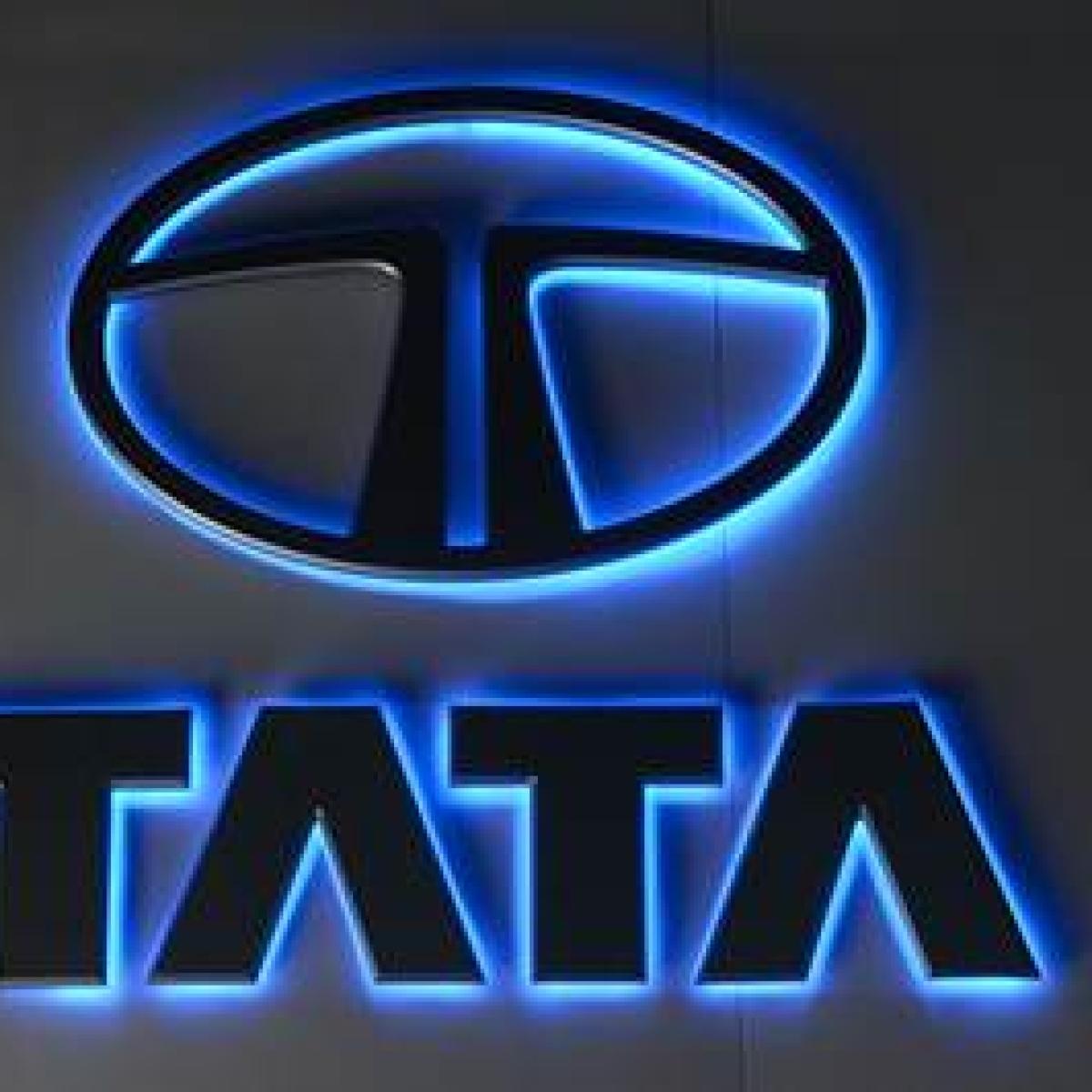 Tata Motors domestic sales fall 12 pc to 44,254 units in December