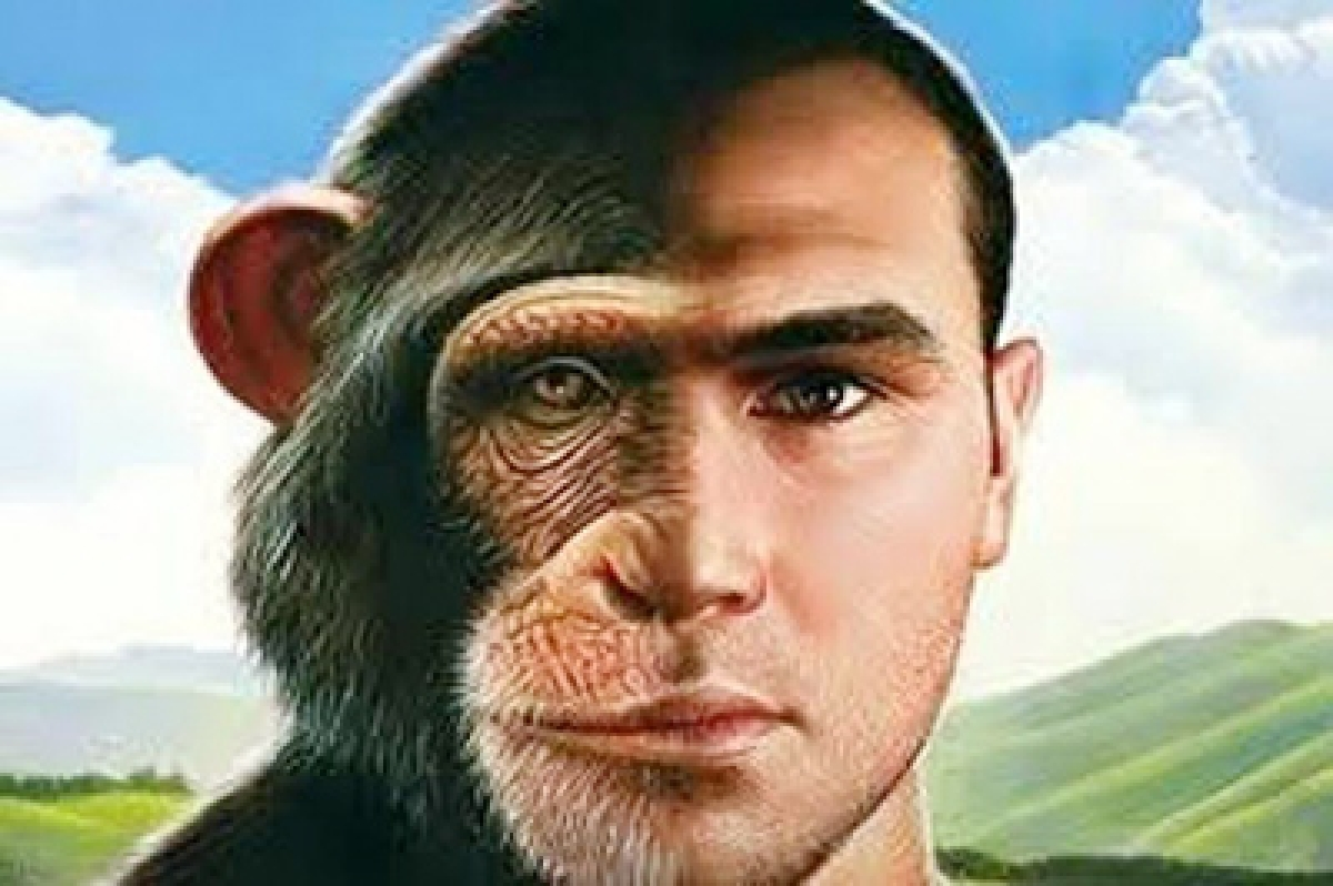 Humans split from primates much earlier than believed