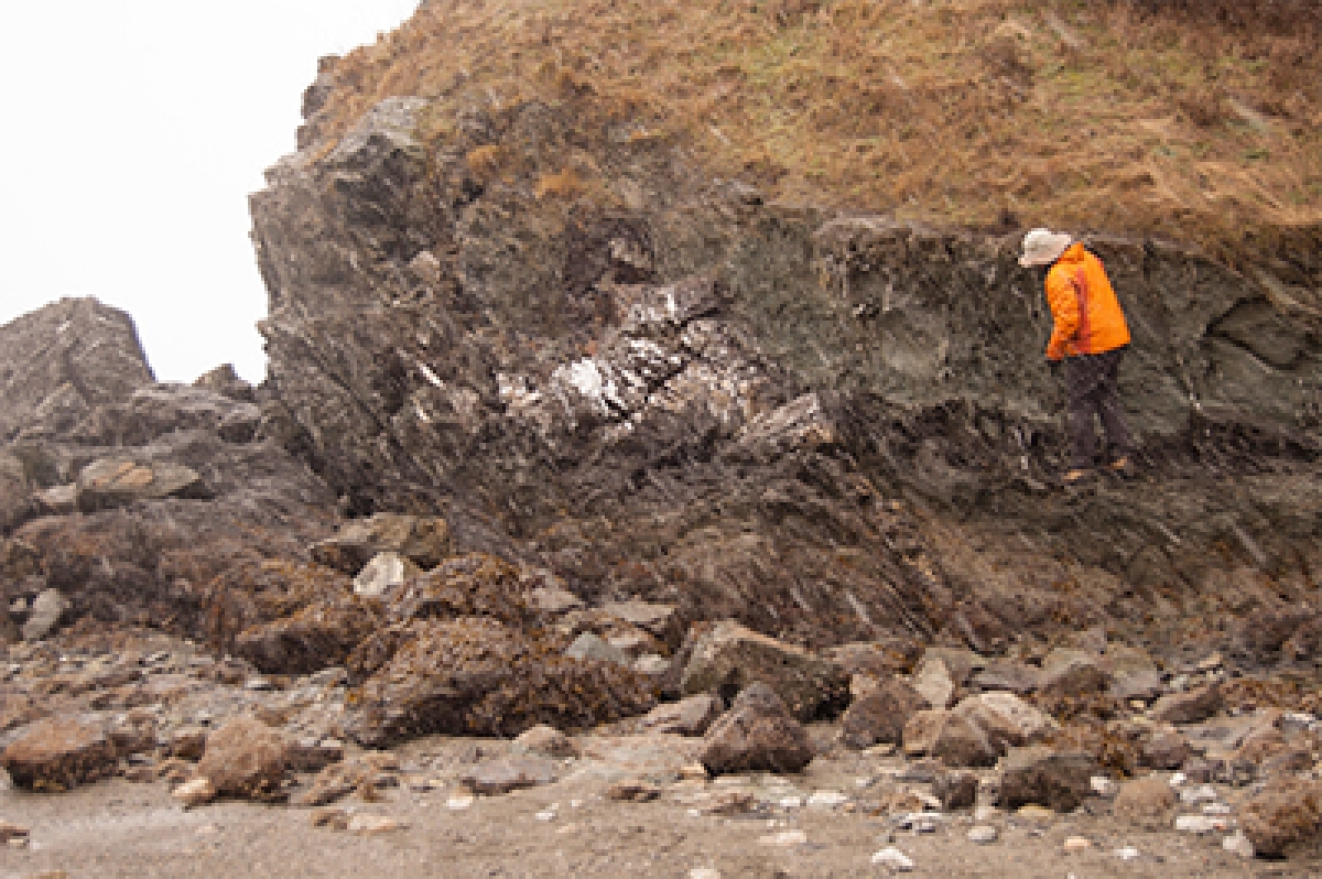 New microbes that thrive deep in the earth discovered