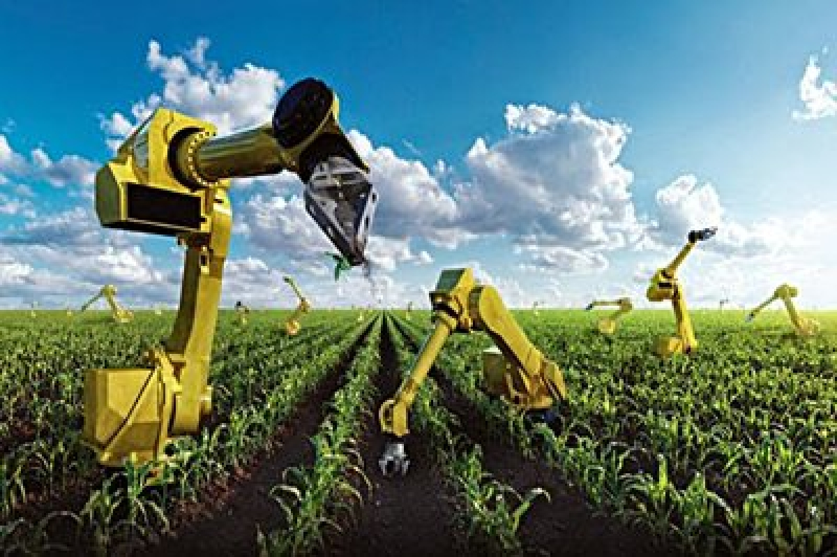 Big Data, AI to be game changer in India's farm sector: Agri Sec